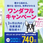 【4/11まで】スタディサプリENGLISHワンダフルキャンペーン!(日常会話コース)